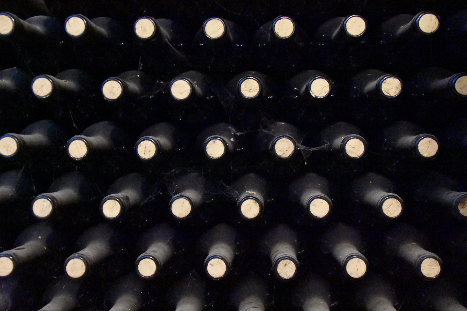 Wine Bottles being stored on a rack